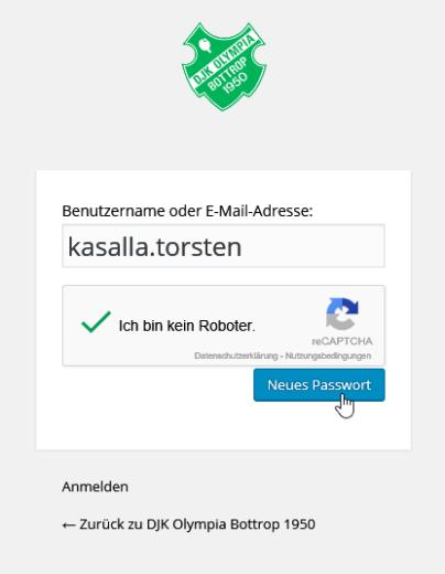 Passwort vergessen: neues Passwort anfordern, ausgefüllt